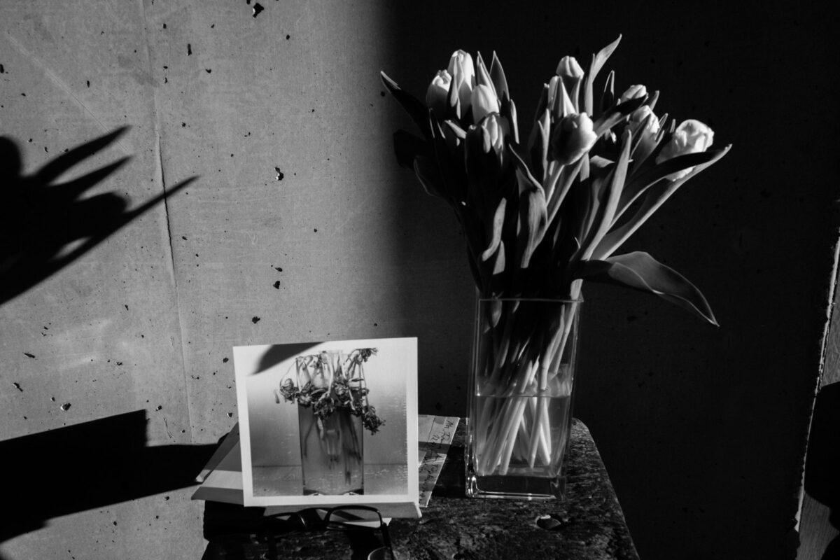 Today's favorite: Blumenphase